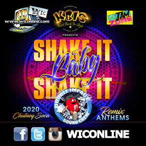 Shake It Baby Shake It 2020 by Double Impact Sound Crew
