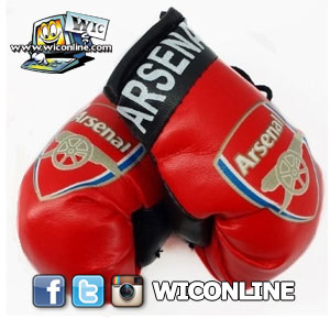 Arsenal Boxing Gloves