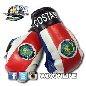 Costa Rica Mini Boxing Gloves