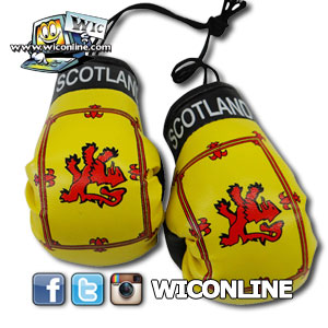 Scotland Lion Boxing Gloves