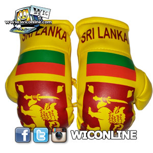 Sri Lanka Large Boxing Gloves