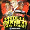 DJ Willie Best of PitBull Don Omar & Romeo Santos