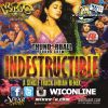 Indestructible By Thunderball Sound Crew